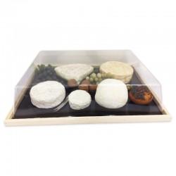Plateau pour présentation fromage professionnel